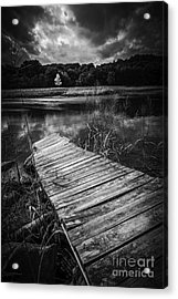 Acrylic Print featuring the photograph Tree Of Zen Black And White by Edward Fielding