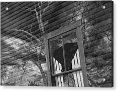 Tree On Window Acrylic Print