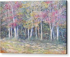 Tree Pageant Acrylic Print by Penny Neimiller