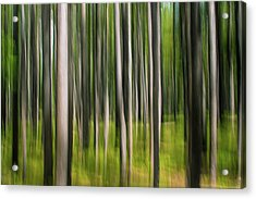 Tree Painting Acrylic Print
