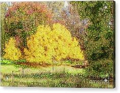 Tree Park Aglow Acrylic Print by Elaine Teague