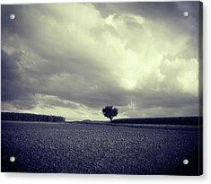 Tree Poem Acrylic Print