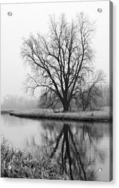Tree Reflection In The Fox River On A Foggy Day Acrylic Print