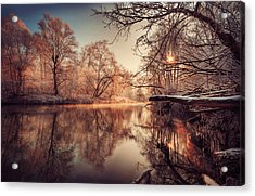 Tree Reflection In River Acrylic Print by Philippe Sainte-Laudy Photography