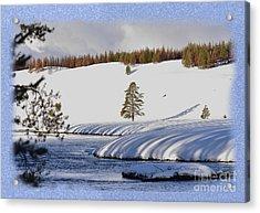Acrylic Print featuring the photograph Tree Shadows Along The Madison by Kae Cheatham