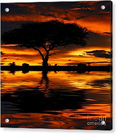 Tree Silhouette And Dramatic Sunset Acrylic Print by Anna Om