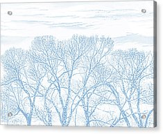 Acrylic Print featuring the photograph Tree Silhouette Blue by Jennie Marie Schell