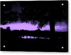 Tree Silhouette By The Pond Purple Acrylic Print by Thomas Woolworth