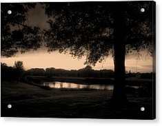 Tree Silhouette By The Pond Sepia Acrylic Print by Thomas Woolworth