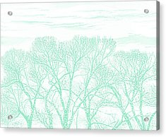 Acrylic Print featuring the photograph Tree Silhouette Teal by Jennie Marie Schell