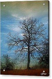 Tree Spirits Acrylic Print