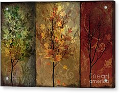 Tree Story Acrylic Print by Mindy Sommers