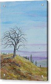 Tree Study With Red Shirt Acrylic Print by Steve Mountz