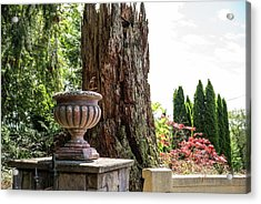 Tree Stump And Concrete Planter Acrylic Print