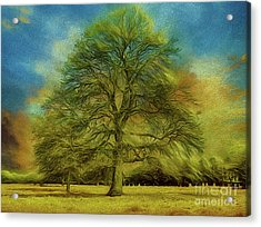 Tree Three Acrylic Print