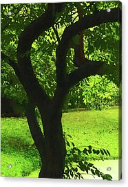 Tree Trunk Green Acrylic Print