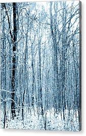 Tree Trunks Pattern Acrylic Print by Svetlana Sewell