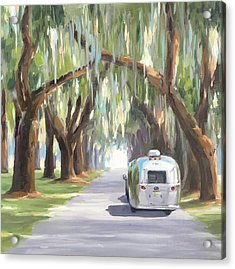 Tree Tunnel Acrylic Print