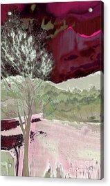 Tree Witness To Lake At Dawn Acrylic Print