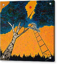Treehouse Acrylic Print by Randall Weidner
