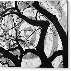 Treeman Acrylic Print by Arnuda