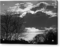 Trees And Clouds-st Lucia Acrylic Print by Chester Williams
