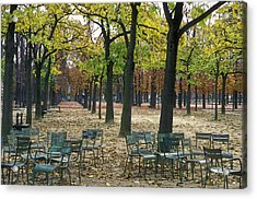 Trees And Empty Chairs In Autumn Acrylic Print by Stephen Sharnoff