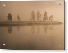 Acrylic Print featuring the photograph Trees And Fog by Gary Lengyel