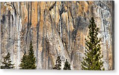 Trees And Granite Acrylic Print