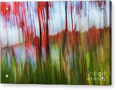 Acrylic Print featuring the photograph Trees And Lake by Elena Elisseeva