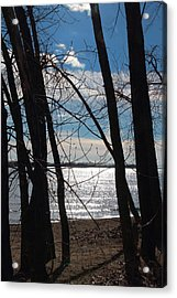Acrylic Print featuring the photograph Trees And Lake Reflections by Valentino Visentini