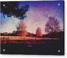 Trees And Pasture Acrylic Print