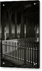 Trees And Pickets Acrylic Print