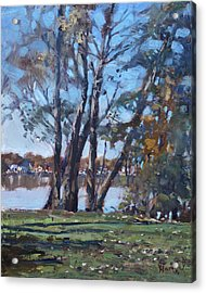 Trees By The River Acrylic Print by Ylli Haruni