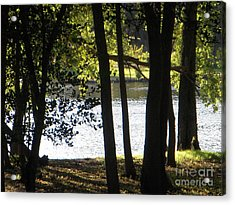 Trees By Rivers Of Water Acrylic Print by Deborah Finley