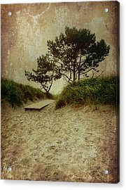 Trees By The Sea Acrylic Print