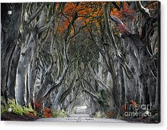 Trees Embracing Acrylic Print
