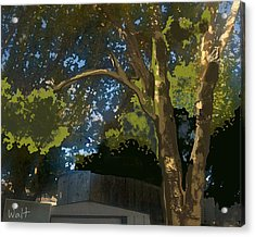 Acrylic Print featuring the digital art Trees In Park by Walter Chamberlain