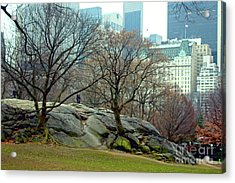 Acrylic Print featuring the photograph Trees In Rock by Sandy Moulder