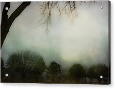 Trees In The Mist Acrylic Print by Jill Smith
