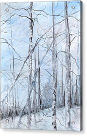 Trees In Winter Snow Acrylic Print by Robin Miller-Bookhout