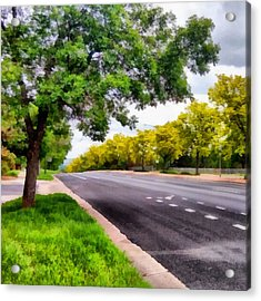 Trees On Both Sides Of A Road Acrylic Print