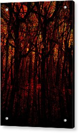 Trees On Fire Acrylic Print