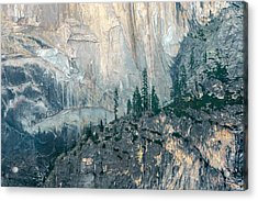 Trees On Ledge Acrylic Print