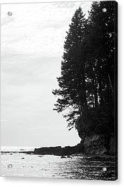 Trees Over The Ocean Acrylic Print