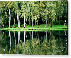Trees Reflected In Water Acrylic Print