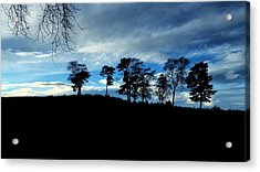 Trees Acrylic Print by RKAB Works