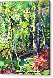 Trees Acrylic Print by Robin Miller-Bookhout