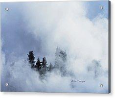 Trees Through Firehole River Mist Acrylic Print