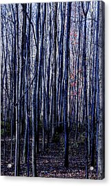 Treez Blue Acrylic Print
